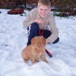 rusty pup