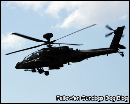Apache Helicoptor Gunship